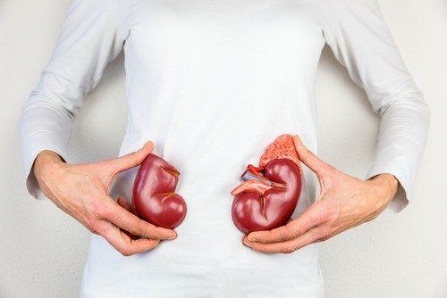 Mối liên hệ giữa bệnh lý thận và bệnh tăng huyết áp